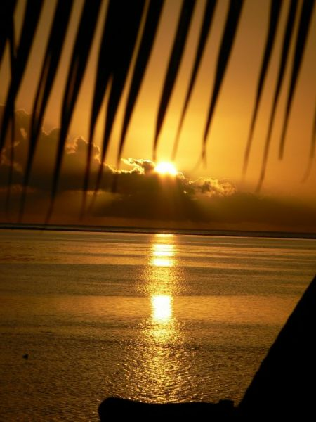 sunsetmoorea2.jpg